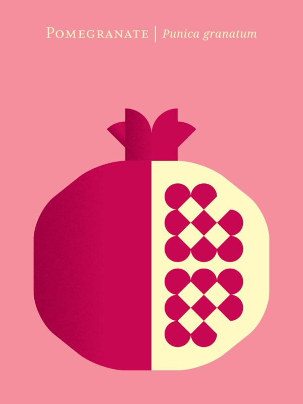 fruit poster_03