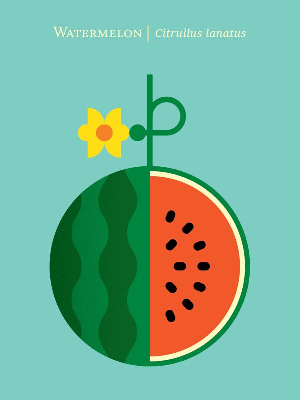 fruit poster_07