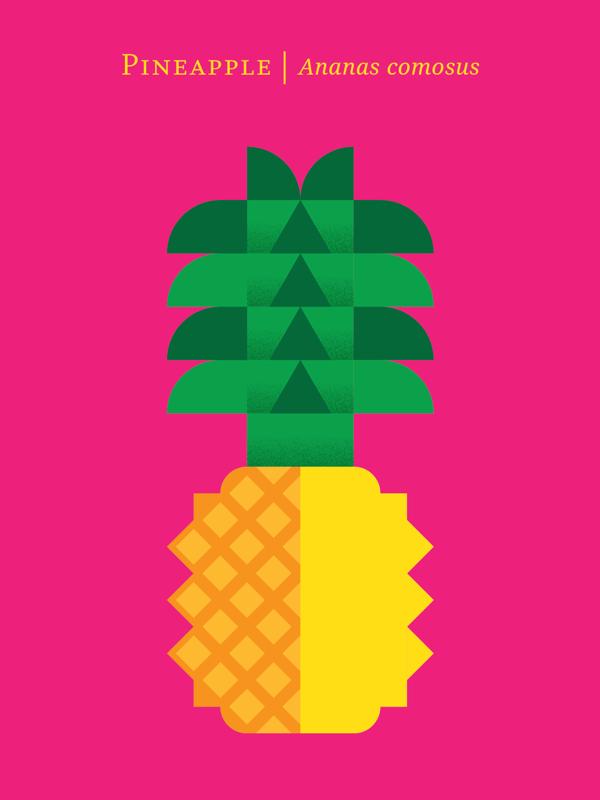 fruit poster_08
